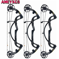 1 Set 50 65lbs IBO 330FPS Archery Compound Bow Carbon Fiber Adjustable Bows For Outdoor Field Hunting Shooting Camping Accessory