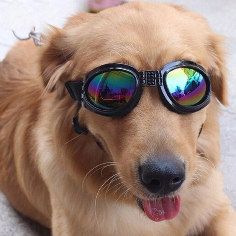 1 Pc Hund Sonnenbrille Für Große Hunde Pool Schutz Brille Hund Pflege Zubehör Pet Liefert Pet Produkte Eine Lange Historische Stellung Haben