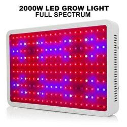 High Power 2000W LED lampy do uprawy AC85-265V pełne spektrum oświetlenie roślin dla szklarni kwiaty hydroponiczne rośliny warzywa