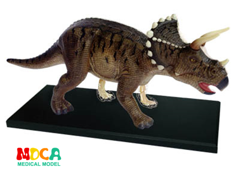 Triceratops 4d master puzzle Assembling toy Animal Biology Dinosaur organ anatomical model medical teaching model 4d master cat puzzle assembling toy animal biology organ anatomical model medical teaching skull skeleton model science toys