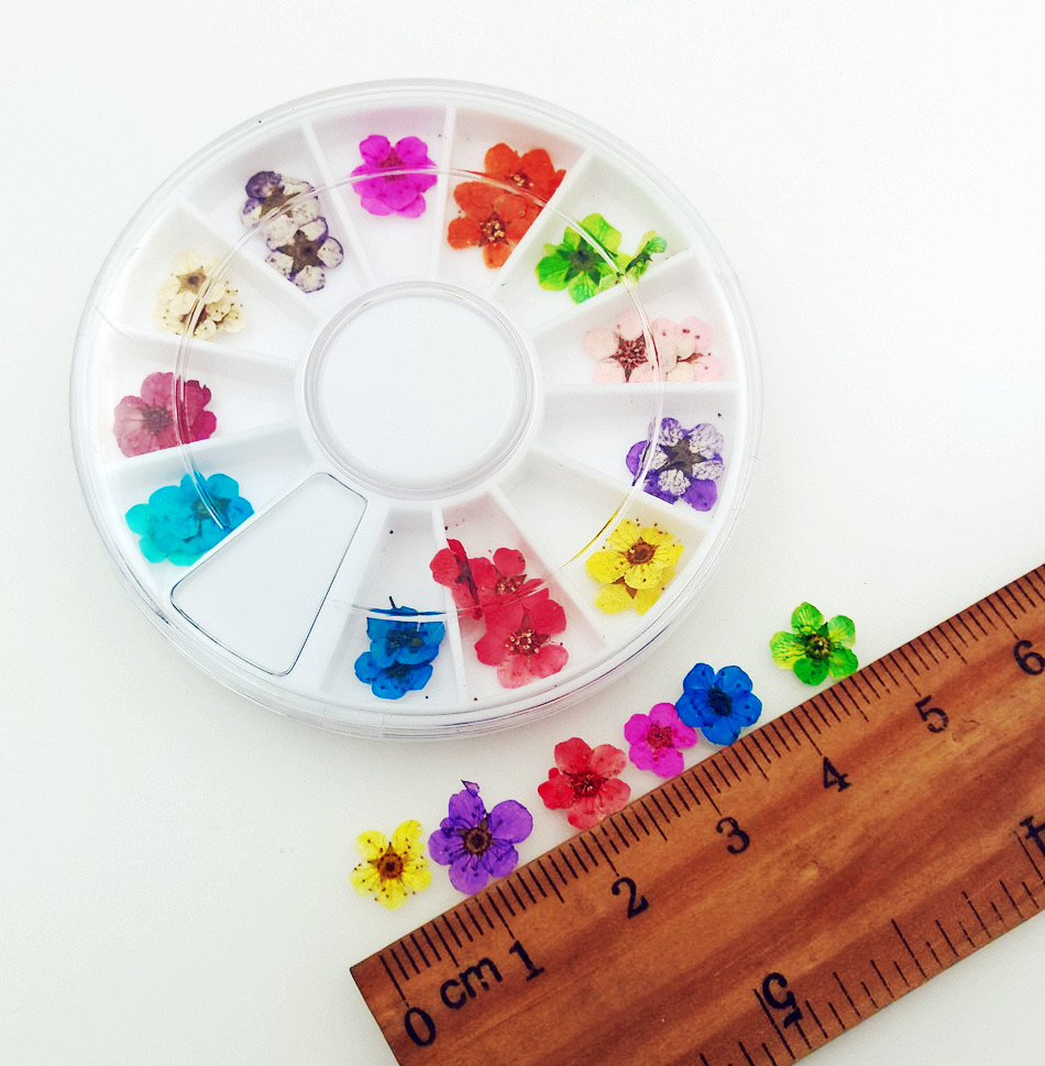 30pieces with one plastic box mini Pressed flowers natural Dried flowers with plastic box glass globe filler charms in Jewelry Findings Components from Jewelry Accessories