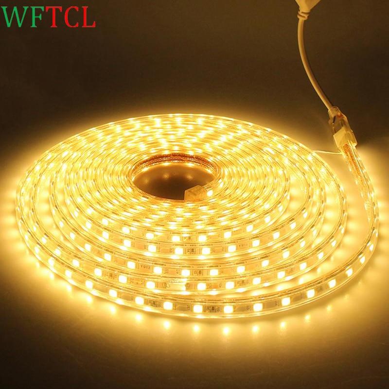 WFTCL AC220V Waterproof SMD5050 60leds/m LED tape flexible led Strip light lamp Tape + EU Power Plug For outdoor garden lighting