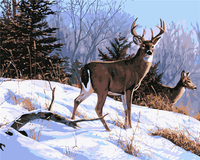 Frame Frameless Painting By Numbers Snow And Deer Digital Oil Painting Canvas Unique Gift Picture Home