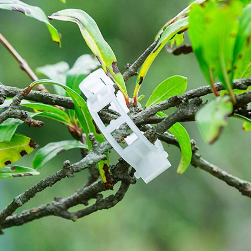 Garden Plant Support Clips Connects Plants Vine Tomato Vegetable Fastening Clip Plant Plastic Clip Supplies 10Pcs/50Pcs/100Pcs