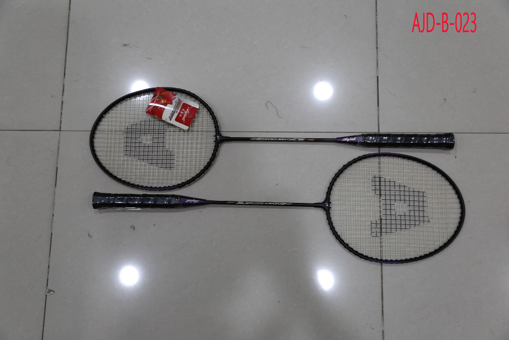 Flexible A Pair of  Badminton Racket With Bag Men Women Sports Training Rackets For Outdoor Activities
