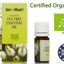 Чистый органический чай дерево эфирное масло сафлора 5 мл   терапевтическое высокое качество