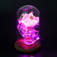2pcs Glass Display Dome With Wooden Base DIY Flower Vases Cloche Bell Jar Glass Domes Birthday