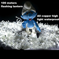 100 m lamp string lights copper wire high brightness and waterproof landscape lamp  square/ park/ party a small lights
