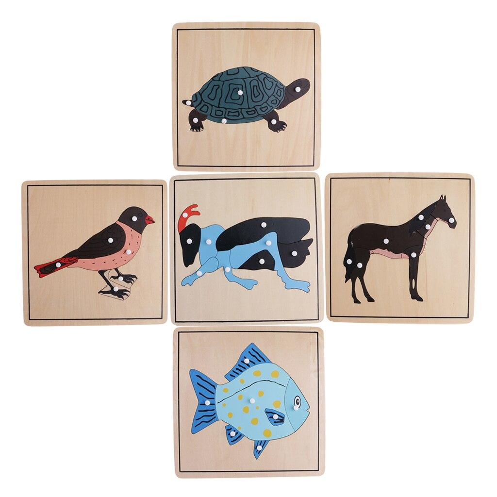 Montessori zoologie matériel-5 animaux squelette Puzzles jouet cadeau pour les enfants