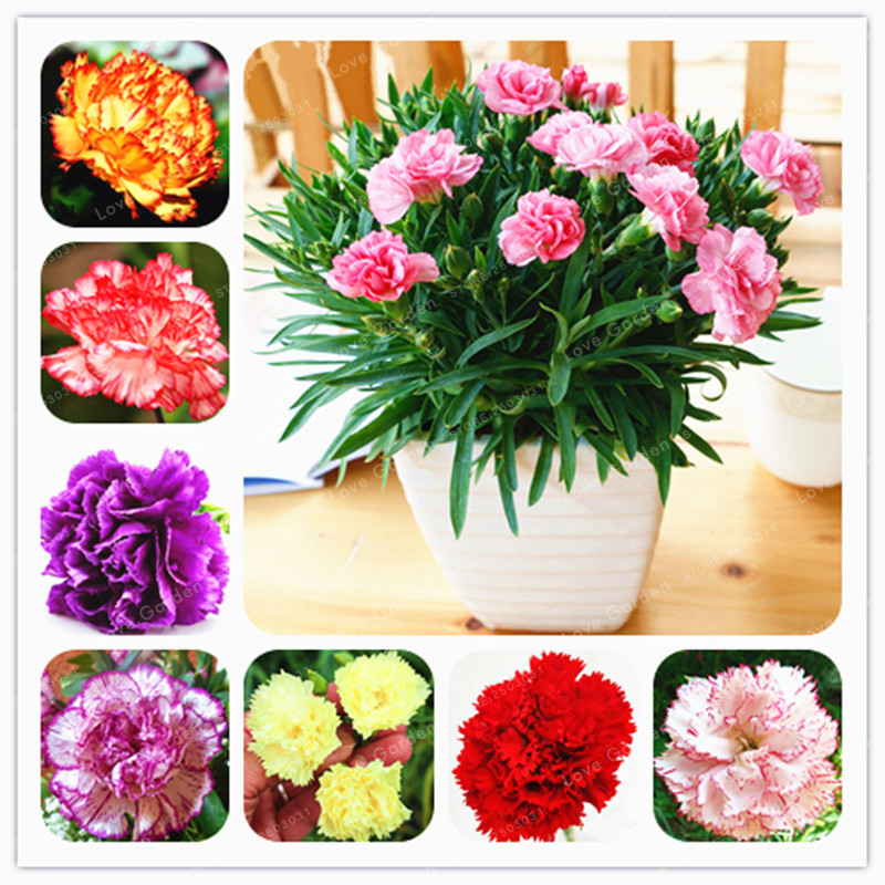 online buy wholesale gardening gifts for mom from china gardening