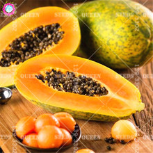 Giant fresh papaya seeds Natural organic fruit tree seeds Perennial plants bonsai for spring farm supplies Best packaging 30pcs