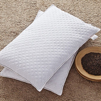 Cloud Breeze Dual Cooling Pillow Filled with Buckwheat shell King Cotton Cover48cmx74cm