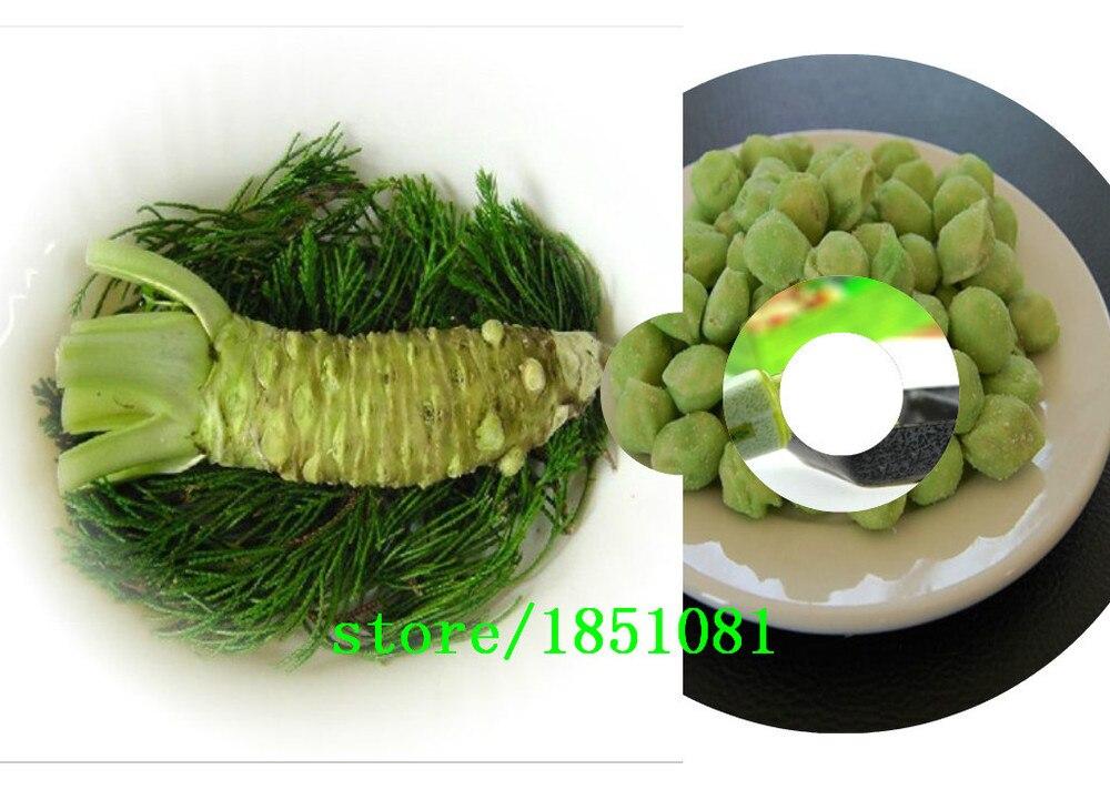 100 шт./лот васаби семена, японский хрен семян овощных бонсай завод DIY домашний сад бесплатная доставка