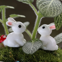 2019 2PCS Lovely Resin Plants Rabbit Cute Micro Landscape Succulent Ornaments Plant Decoration Garden Miniatures DIY Doll(China)