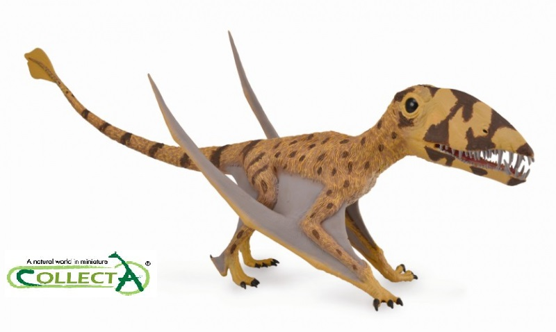 38 CM Length CollectA Dimorphodon With Movable Jaw Dinosaurs Animal Model Dino Classic Toys For Boys 88798 37 cm tyrannosaurus rex with platform dinosaur mouth can open and close classic toys for boys animal model without retail box