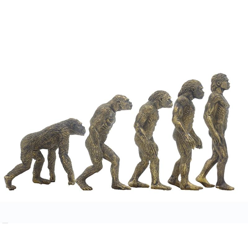 5 pz Human Evolution Ape Modelli Action Figures Giocattoli Collezioni e Visualizza5 pz Human Evolution Ape Modelli Action Figures Giocattoli Collezioni e Visualizza