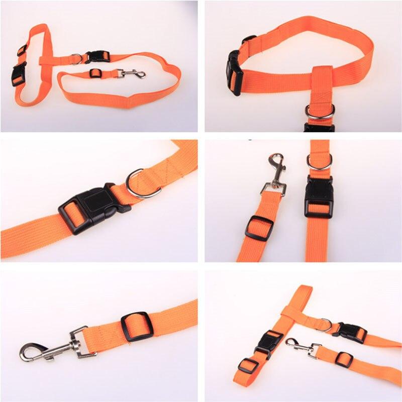 New-Adjustable-nylon-pet-led-dog-collar-harness-for-small-dogs-Running-Jogging-Sport-Walking-leash (5)