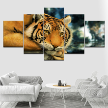 A lying tiger animal poster 5 Piece Wallpapers Art Canvas Print modern Poster Modular art painting for Living Room Home Decor цены