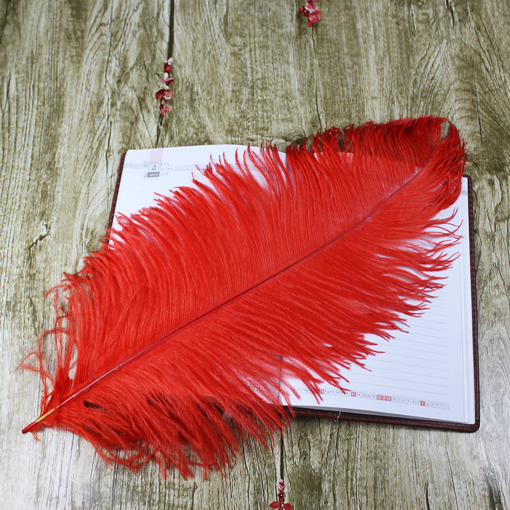 10 PCS beautiful natural red ostrich feather 50-55 cm / 20 to 22 - Arts, Crafts and Sewing - Photo 5