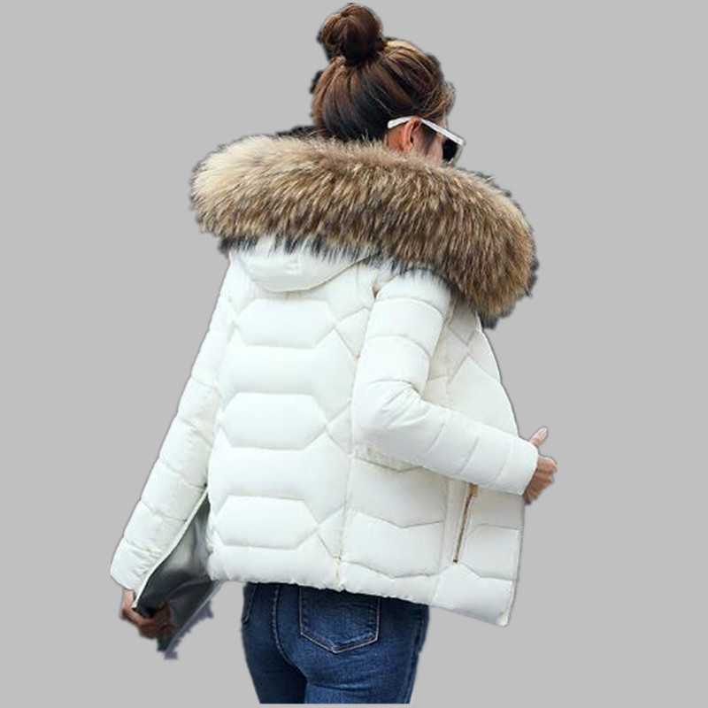 Warm Fur Collar Hooded Thicken Short   Parkas   2019 Slim Fit Fashion Women Padded Jacket Winter Casual Wadded Coat Jaqueta k099