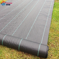 Tewango 100gsm Heavy Duty Lined Weed Control Fabric Landscaping Ground Cover Membrane 2x5M/1x10M