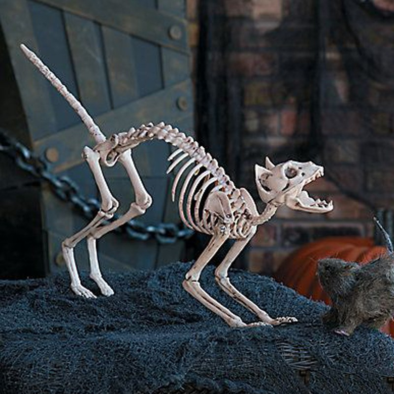 Halloween Cat Skeleton Decoration