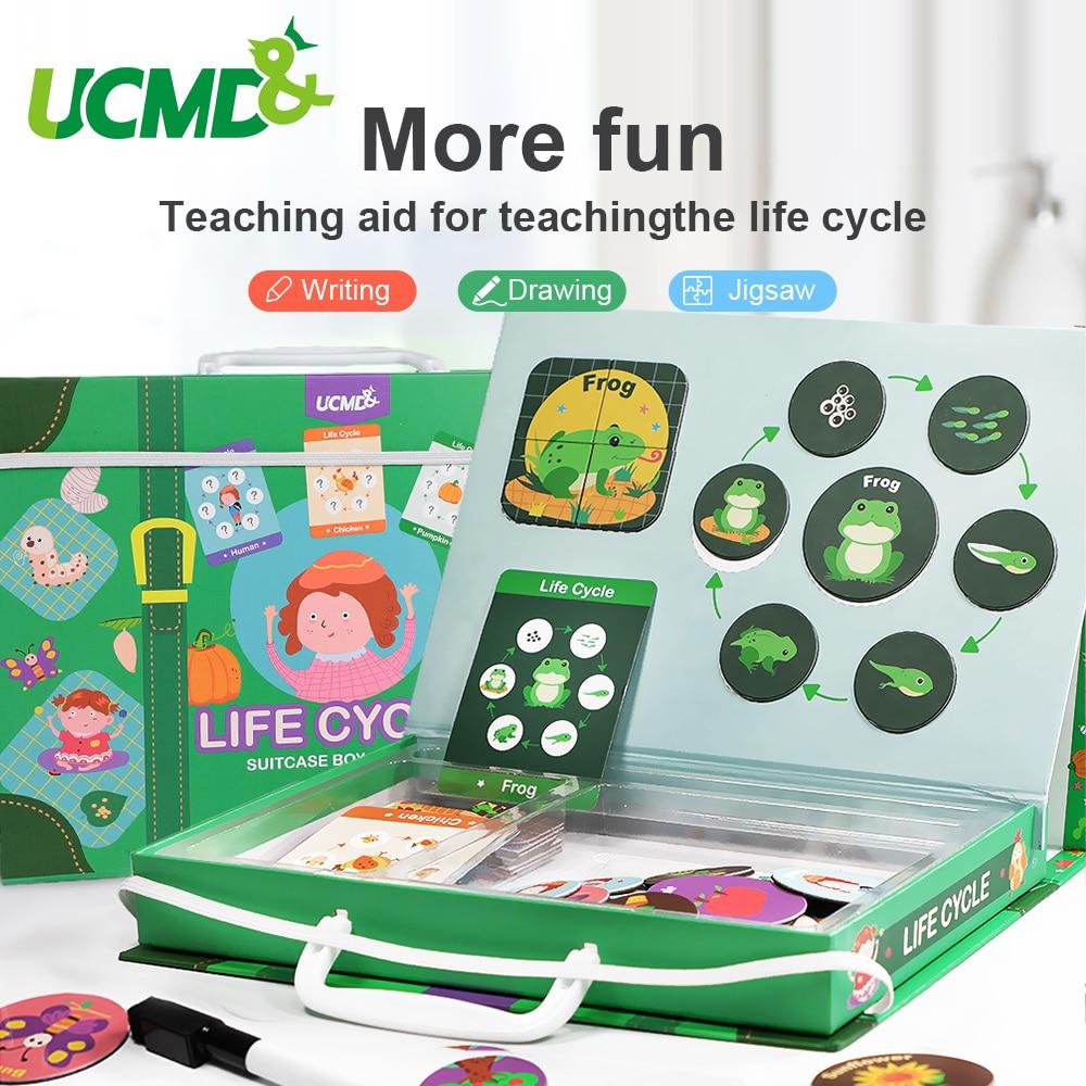 Magnetico Montessori Di Puzzle Pendente Ciclo di Vita di Animale Umano della Crescita Puzzle giocattolo Educativo Precoce Educazione della Prima Infanzia Giocattoli Per Bambini-in Puzzle da Giocattoli e hobby su  Gruppo 1