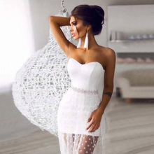 Long Mesh Strapless Sleeveless Bodycon Dress