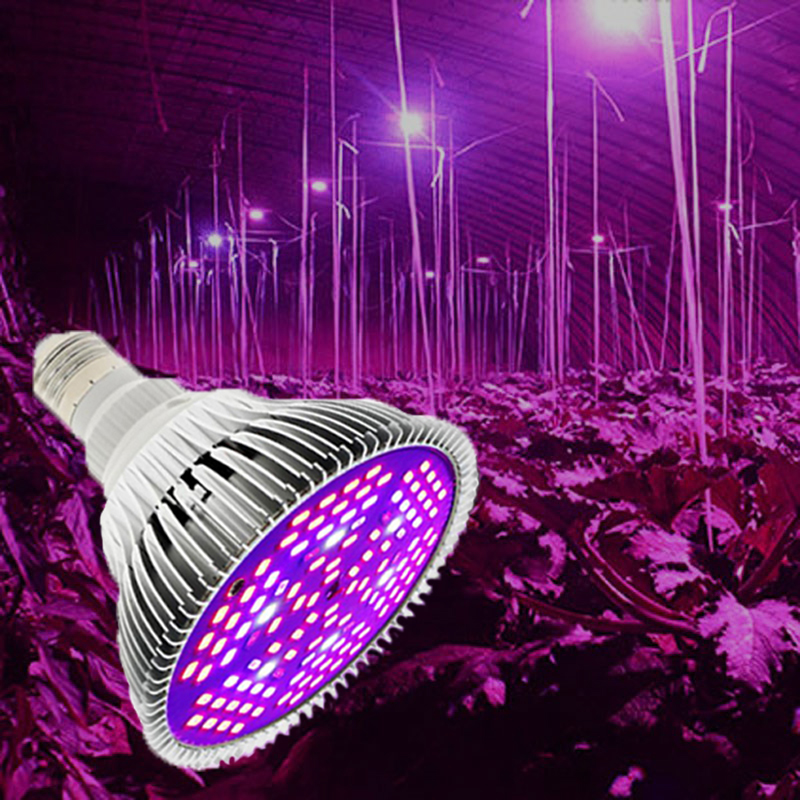 Grow Light Fitolamp Fitolampy Lamp For Plants 50W 80W Fito Led Phyto Lamp For Seedlings Flowers Full Spectrum Growth Light Bulbs