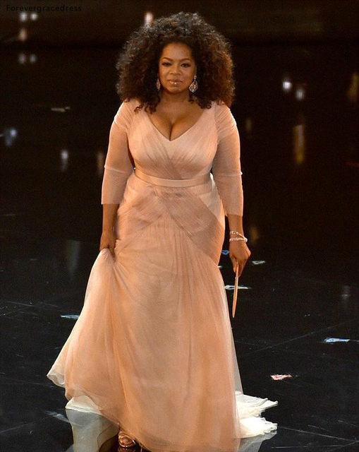 Oprah Winfrey Oscar Celebrity Dresses plus size v neck sheath chiffon with long sleeves mother of bride groom dresses BO9521 144 (7)