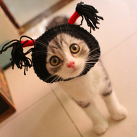 mpk-store-cat-headwear-kitten-headwear-pet-costume