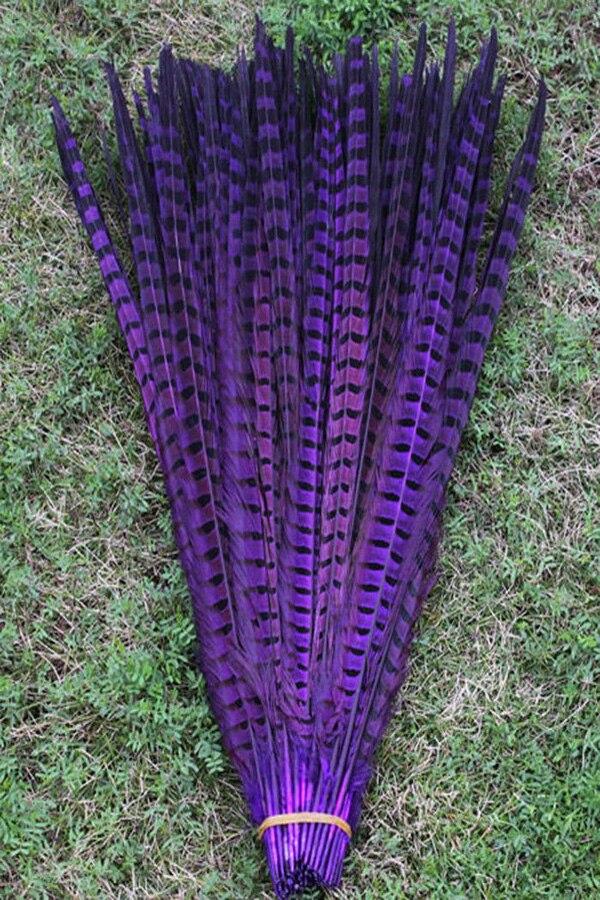 Brezplačna dostava 50 PCS vijolično perje repa fazan 20-22 palcev / - Umetnost, obrt in šivanje