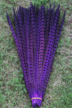 Free shipping 50 PCS purple pheasant tail feathers 20-22 inches / 50 - 55 cm