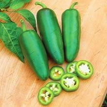 200db Jalapeno Chile paprika magjai NON GMO ereklye Vegetable Seeds Növény dekoráció