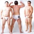 Nova Chegada 2016 Urso Garra Plus Size Translúcido Cuecas dos homens Sensuais calções Urso Gay Orgulhoso Transparente Roupa Interior Branco M L XL XXL