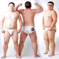 Nueva Llegada 2016 Oso Garra Grandes Tallas para hombres Bragas Translúcidas Sexy pantalones cortos Oso Orgulloso Gay Ropa Interior Transparente Blanco Ml XL XXL