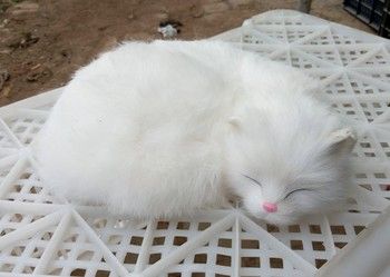 new white simulation cat toy resin&fur beautiful sleeping cat model gift about 27x21cm 1098