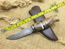 High quality Damascus Hunting Knives! Precious Yellow Horns & Shadow Wood Handle Straight Knife With Leather Sheath,A Typical