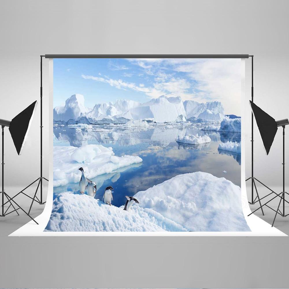 Kate Winter Frozen Background Photography Glacier Penguin Christmas Photography Props Ice Cubes Wedding Photo Background пинетки митенки blue penguin puku
