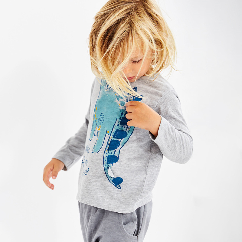 New 18M To 6 Years Dinosaur Pattern Shirts Children Kids Boys Girls Long Sleeve T Autumn Spring Baby Clothes