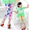 2015 nueva primavera y el verano delgado legging muchachas del bebé del leggins del todo fósforo bebé niños de las polainas de las polainas de las muchachas