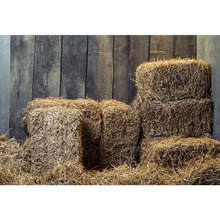 Laeacco Fade Wooden Boards Wall Haystack Portrait Scene Baby Children Photographic Background Photography Photo Backdrops Studio
