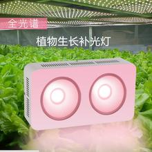 LED grow light 800Watts Full Spectrum for Indoor Greenhouse grow tent plants grow led light  color full grow lamp AC85-265V
