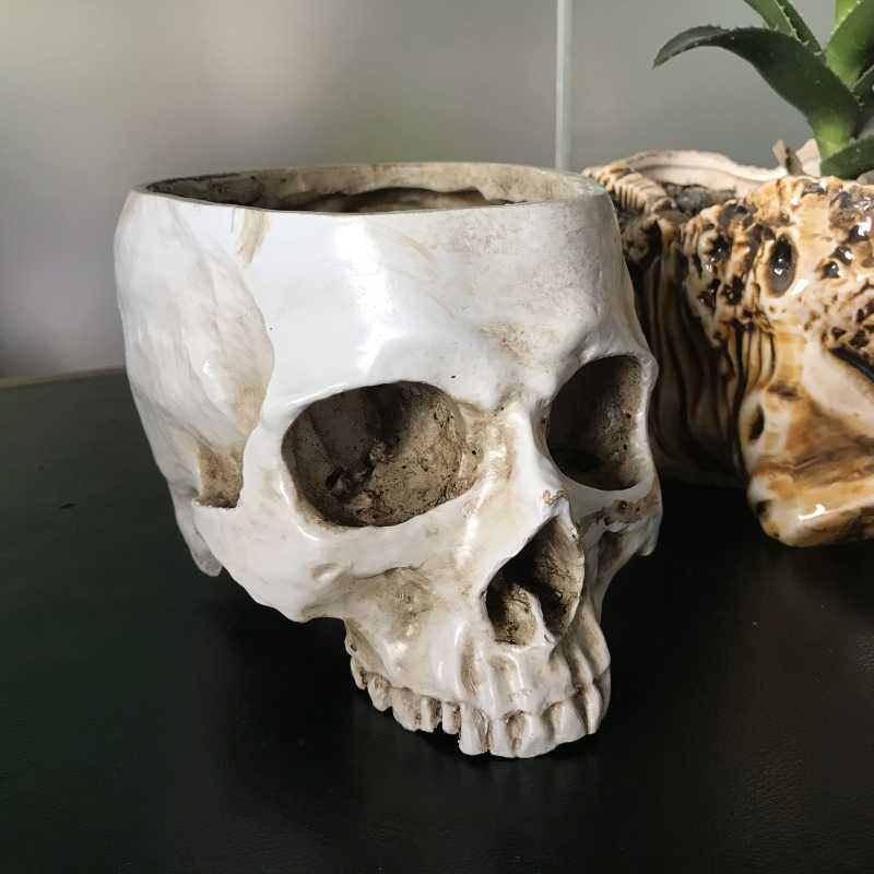 Skull Head Planter - White Human Skull Head Design Flower Pot Container Antique Sculpture Planter Home Decor Gift for Christmas