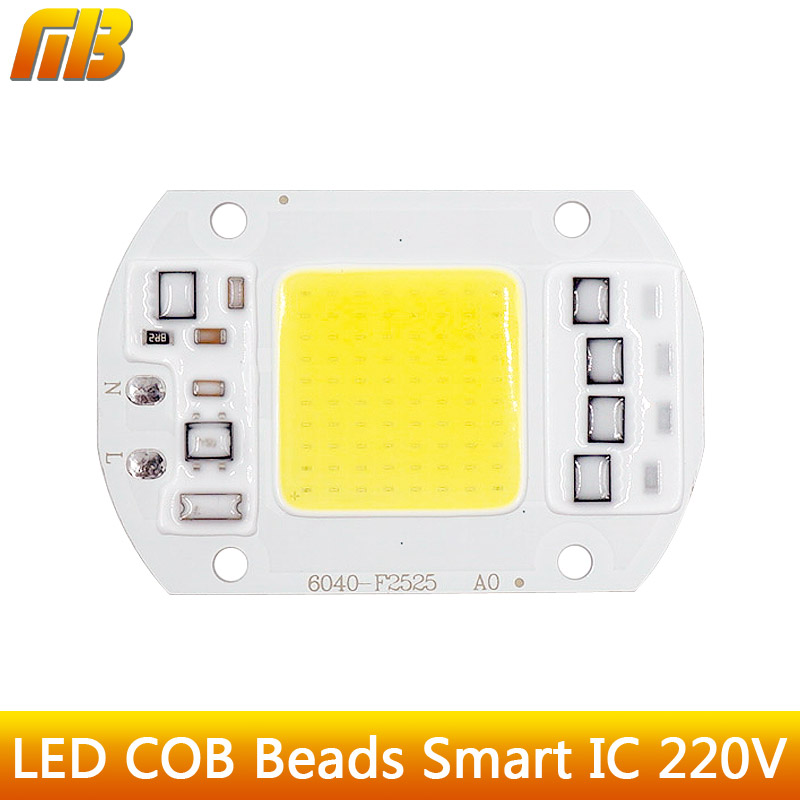 LED COB Bulb Lamp  5W 20W 30W 50W LED Chip Beads 110V 230V Input IP65 Smart IC Fit For DIY LED Flood Light Cold White Warm White