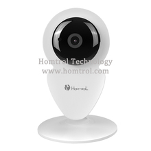 720P HD Mini P2P IP Camera Wireless Wifi Two Way Audio Video Push Alarm with Motion Detection Free APP