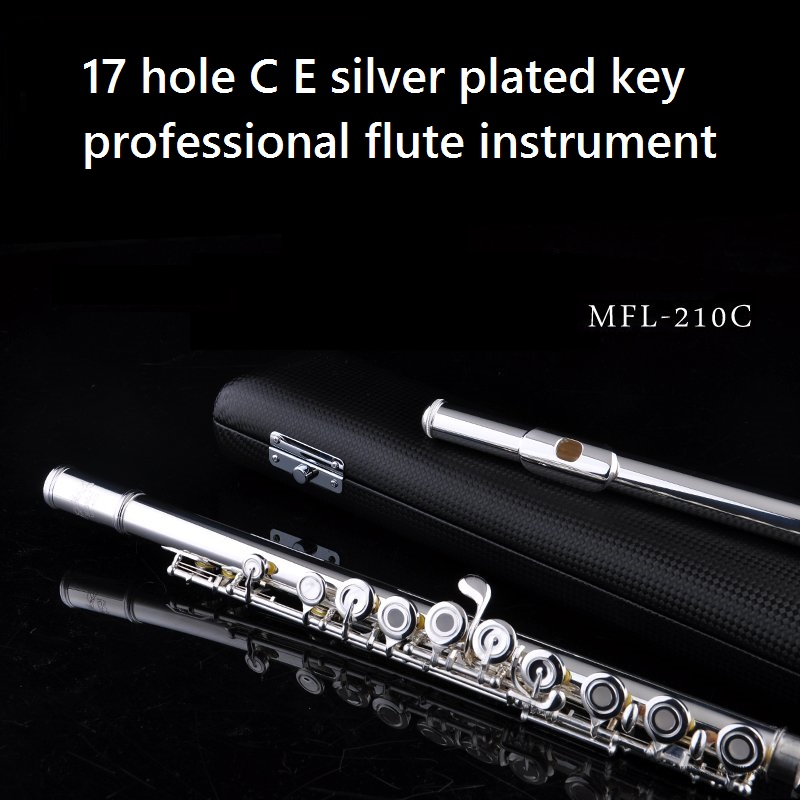 Free shipping C flute vocational 17 holes professional C flute,open-hole And Closed-hole E key silver plated C tone cover case new flute 17 hole open silver plated key e key high quality ebony wood 5