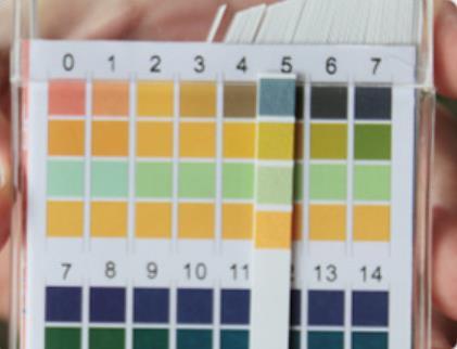 50 pack/lot 100 bandes/paquet universel PH0-14 pH Test papier bandes indicateur Litmus Kit Test pour le niveau corporel Urine et salive