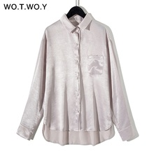 44ffe764d1239c WOTWOY 2019 Summer Silver Apricot Blouse Women Casual Long Sleeve Chiffon Womens  Tops And Blouses Female