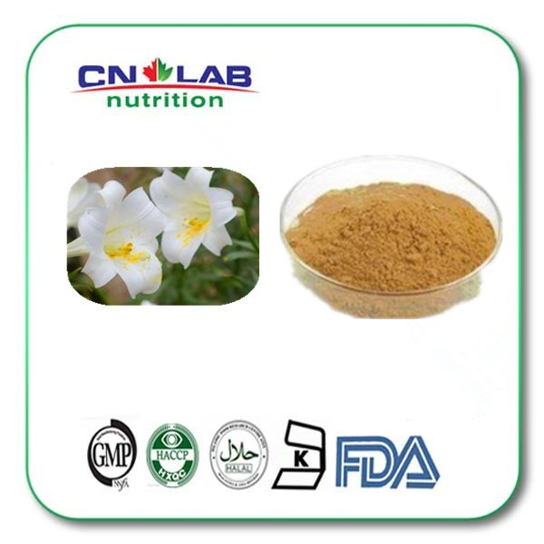 200g Natural lily bulb extract powder купить